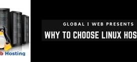 Linux Hosting: Why To Choose Linux Web Server