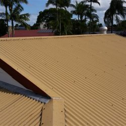 Domestic-Before-ReRoof-2
