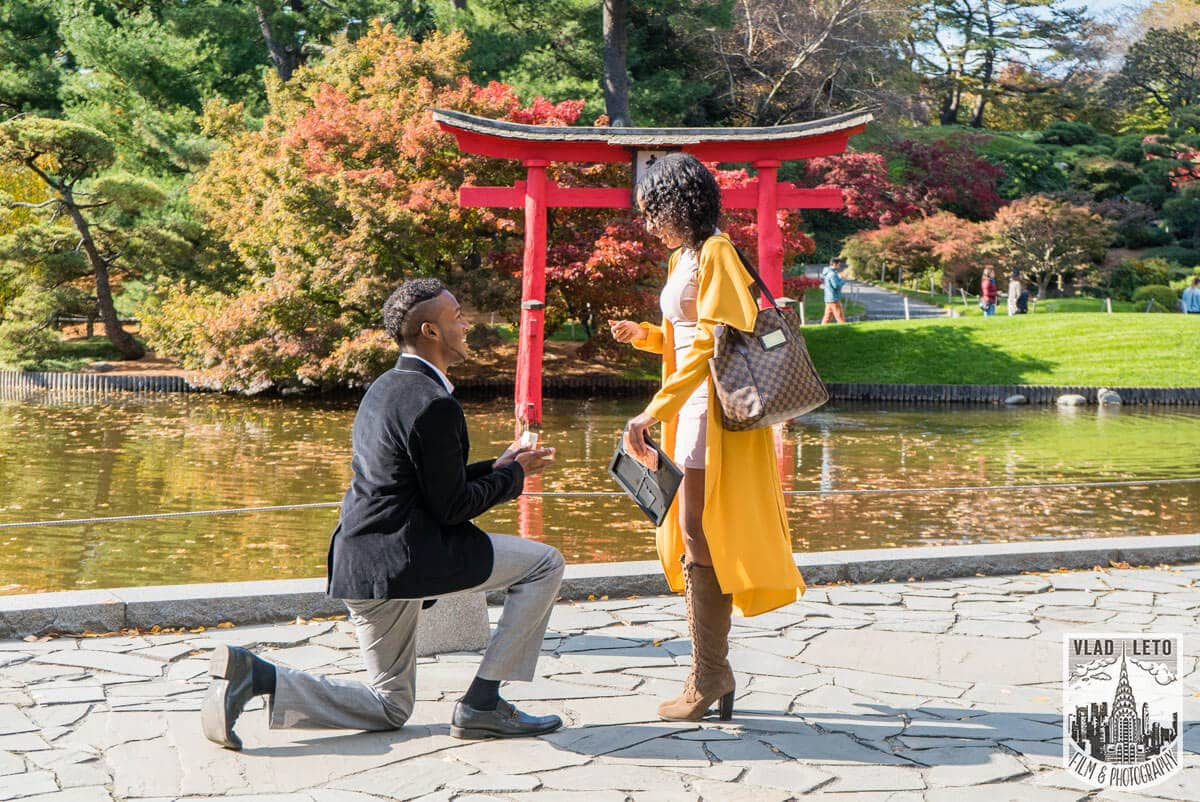 Photo 9 Best Places to Propose in NYC + Tips.   VladLeto