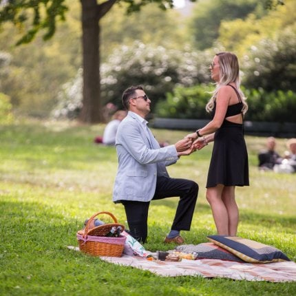 Picnic Proposal in New York