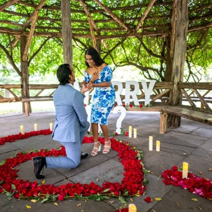 Introducing a new Premium Flowers Proposal design in Central Park