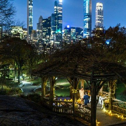 Premium Light the Night in Central Park.