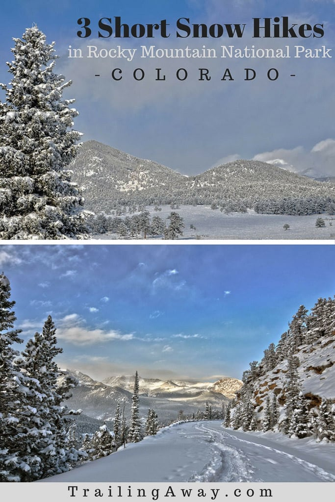 3 Easy Hikes in Rocky Mountain National Park in Winter