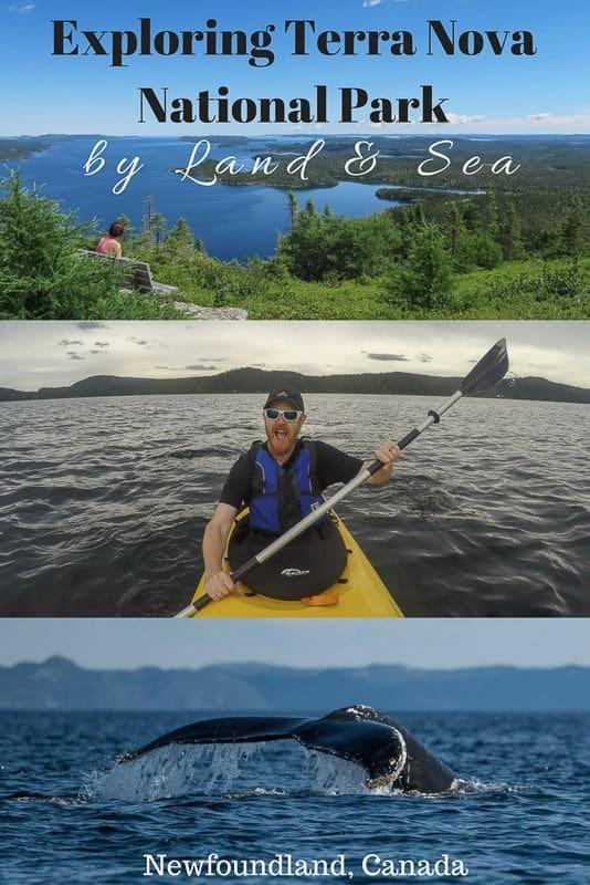 Exploring Terra Nova National Park by Land & Sea
