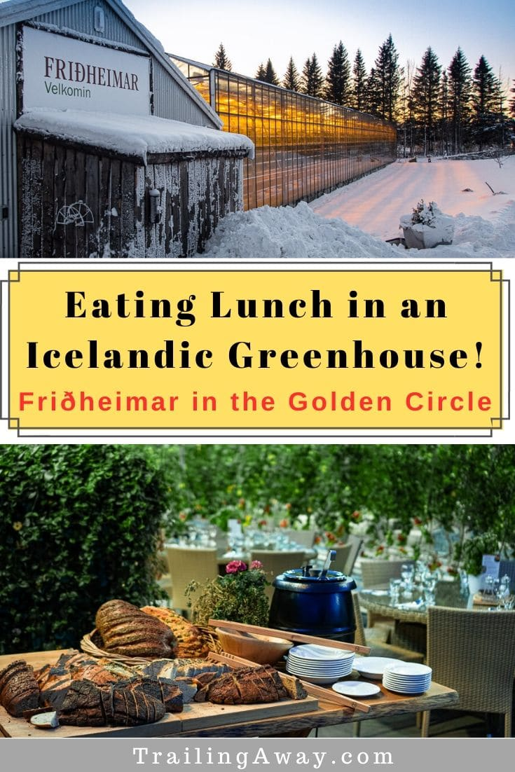 Fridheimar Greenhouse in Iceland\'s Golden Circle: An Unforgettable Lunch Spot
