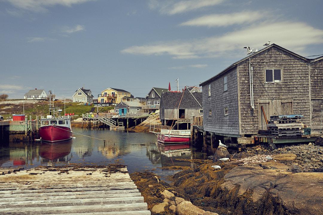 Nova Scotia by Armin Muratovic