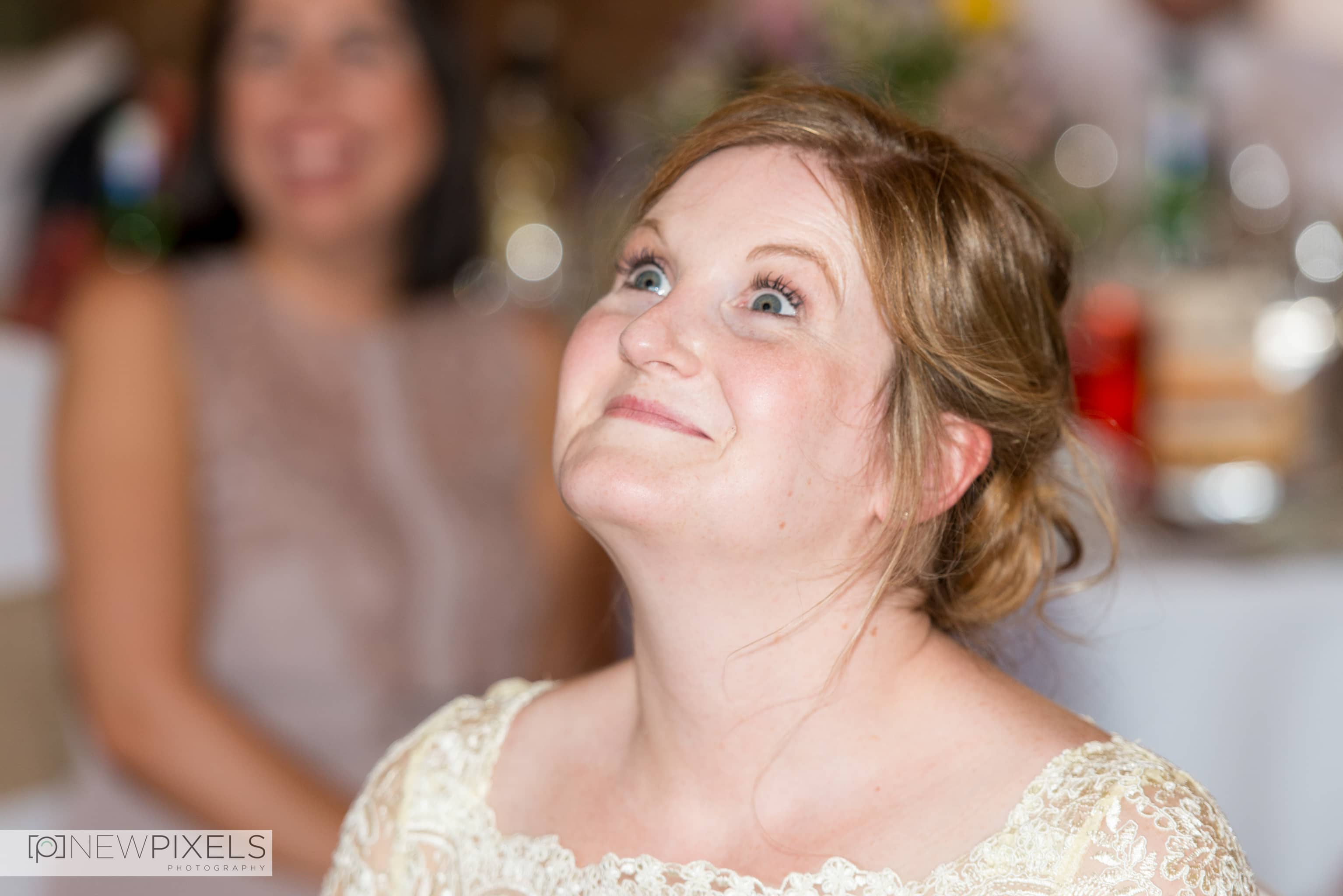 Forty Hall Wedding Photography- New Pixels-58