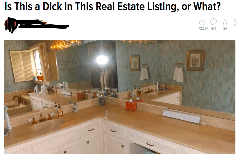 Is_This_a_Dick_in_This_Real_Estate_Listing__or_What_