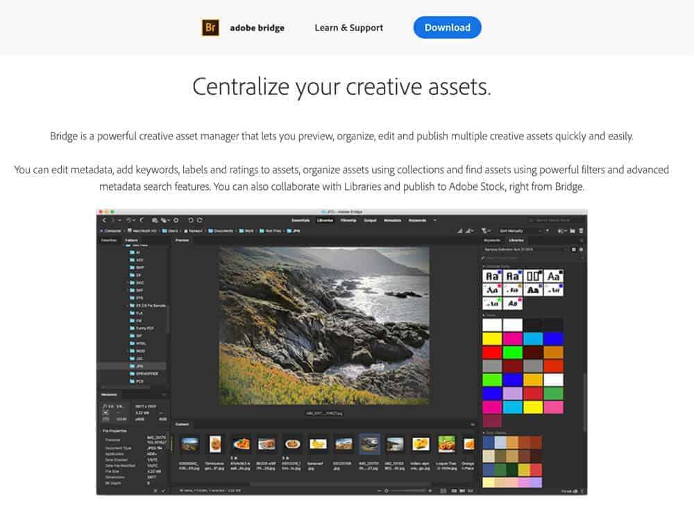 Adobe Bridge Photo Organizing Software
