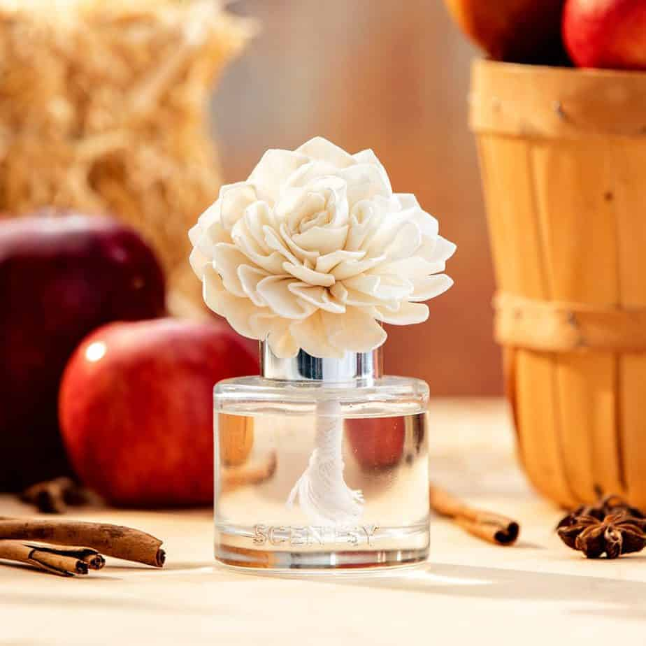 2020 Autumn Collection Fragrance Flower- Apple peel, spiced white pumpkin and a touch of oak