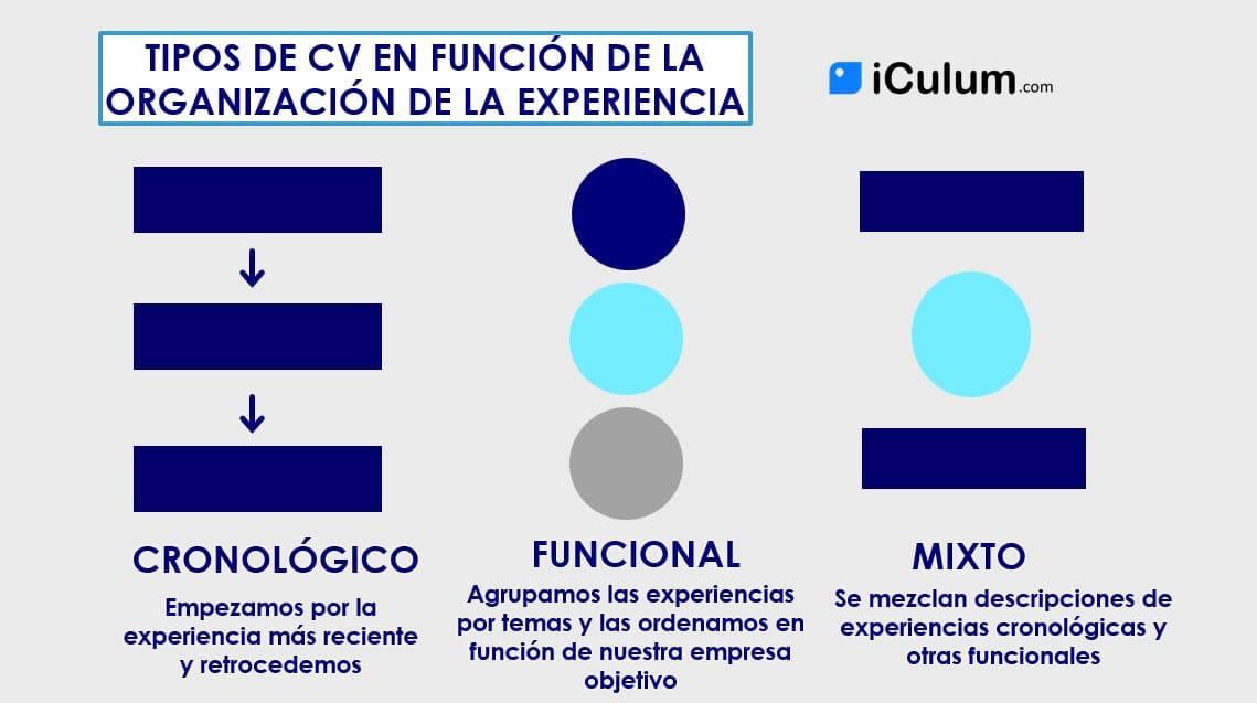 Experiencia Laboral en el Curriculum Cronologico Funcional y Mixto iCulum
