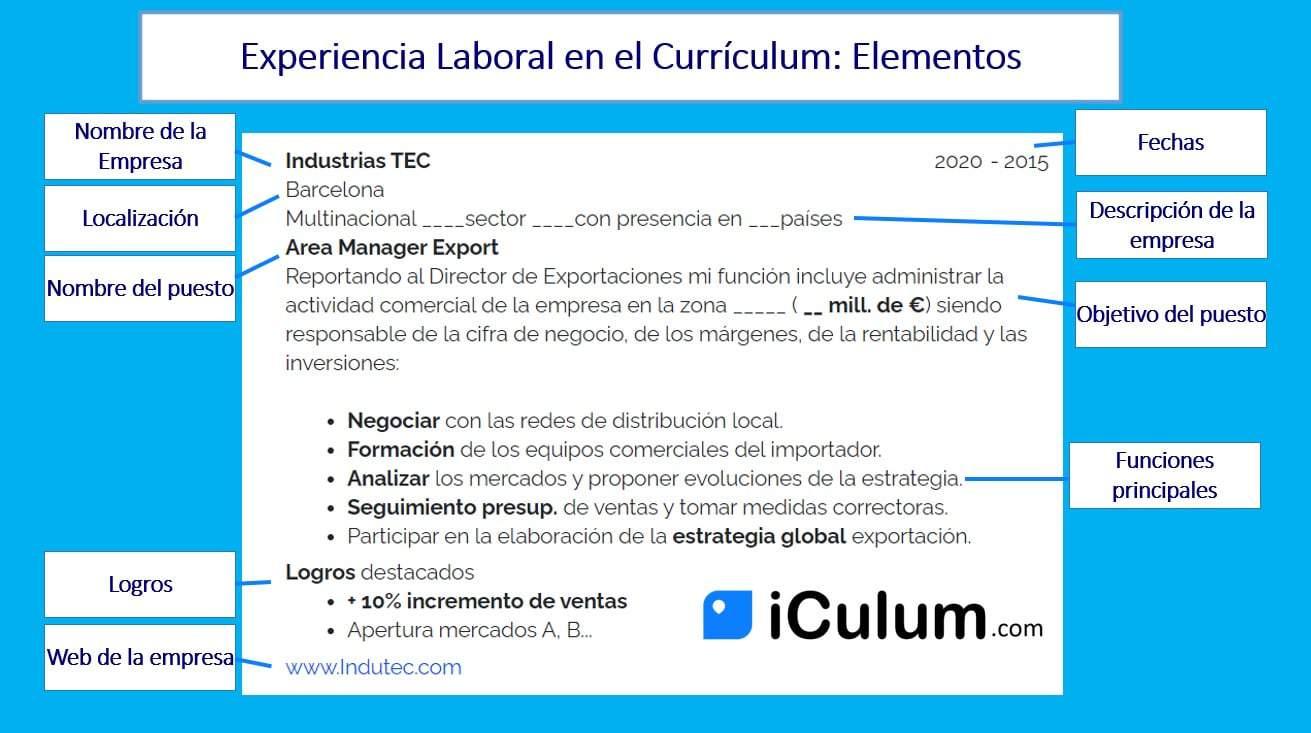 Experiencia Laboral en el Curriculum Elementos iCulum