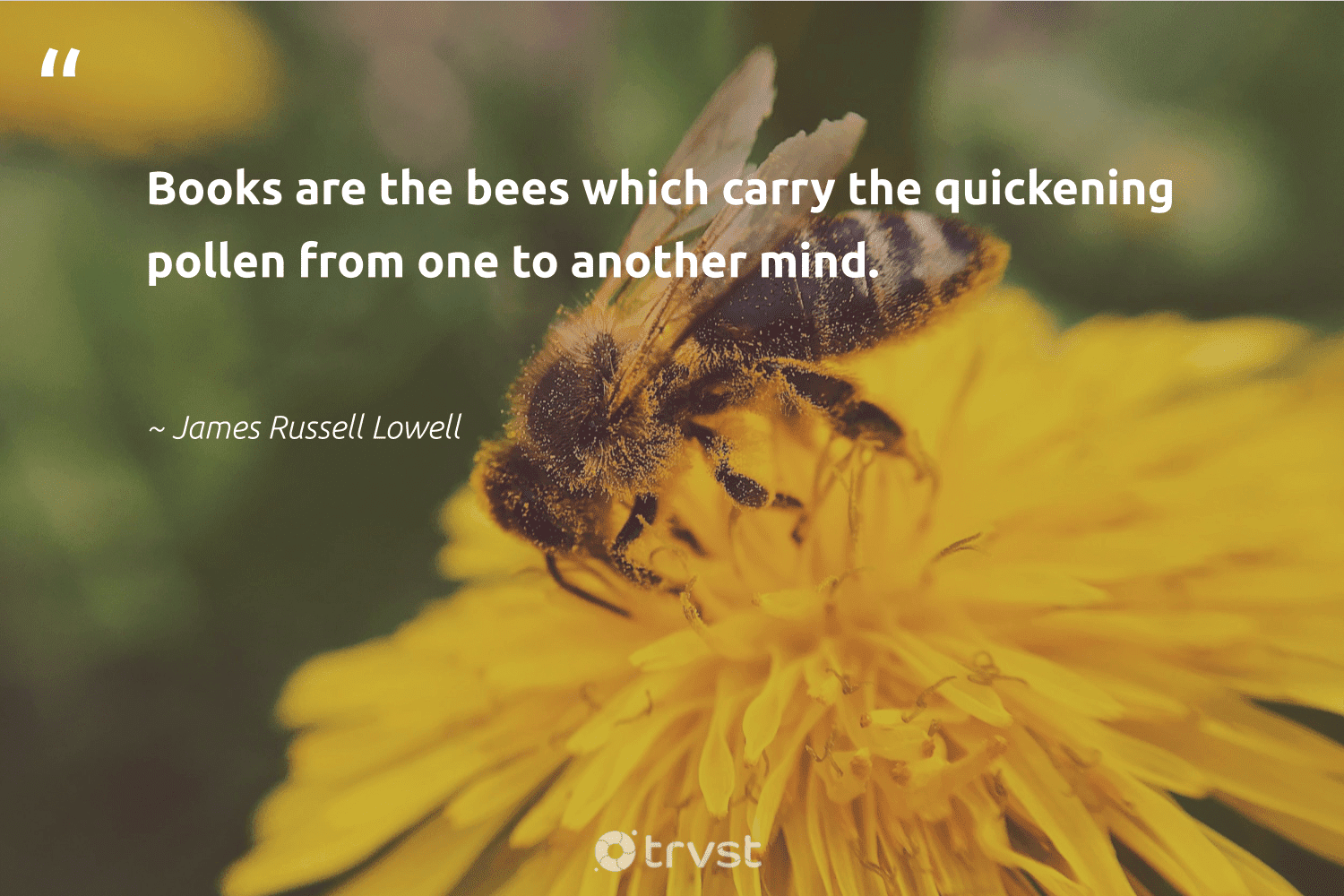 """""""Books are the bees which carry the quickening pollen from one to another mind.""""  - James Russell Lowell #trvst #quotes #bees #pollen #beeswax #insects #biology #planetearthfirst #bee #apiary #forscience #thinkgreen"""