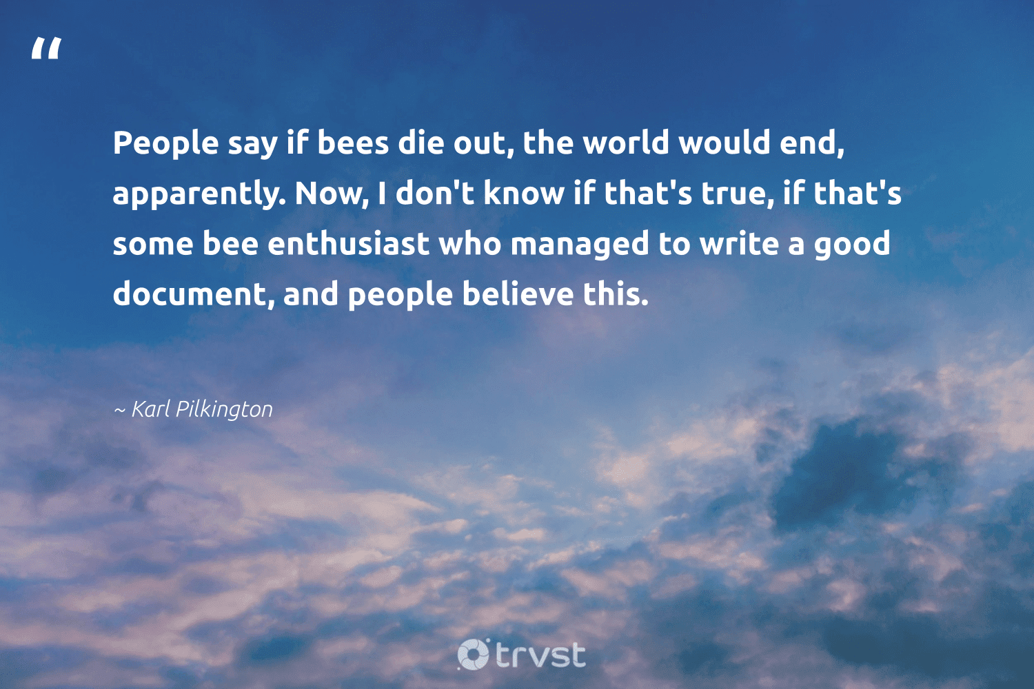 """""""People say if bees die out, the world would end, apparently. Now, I don't know if that's true, if that's some bee enthusiast who managed to write a good document, and people believe this.""""  - Karl Pilkington #trvst #quotes #bee #bees #honey #honeybee #apiary #forscience #beinspired #pollinators #beeswax #beekeeper"""