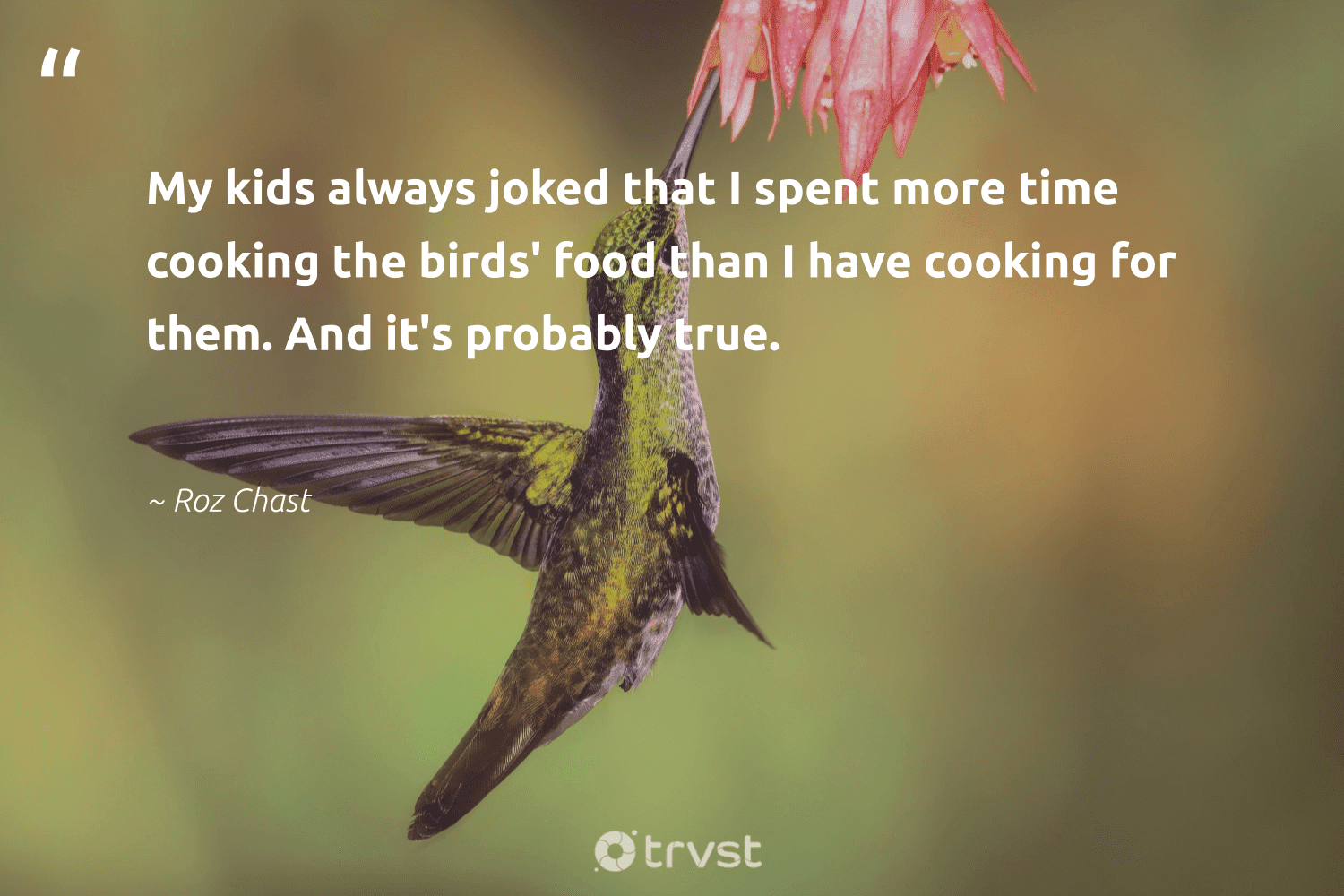 """""""My kids always joked that I spent more time cooking the birds' food than I have cooking for them. And it's probably true.""""  - Roz Chast #trvst #quotes #birds #food #bird #forscience #takeaction #geology #beinspired #nature #socialimpact #biology"""