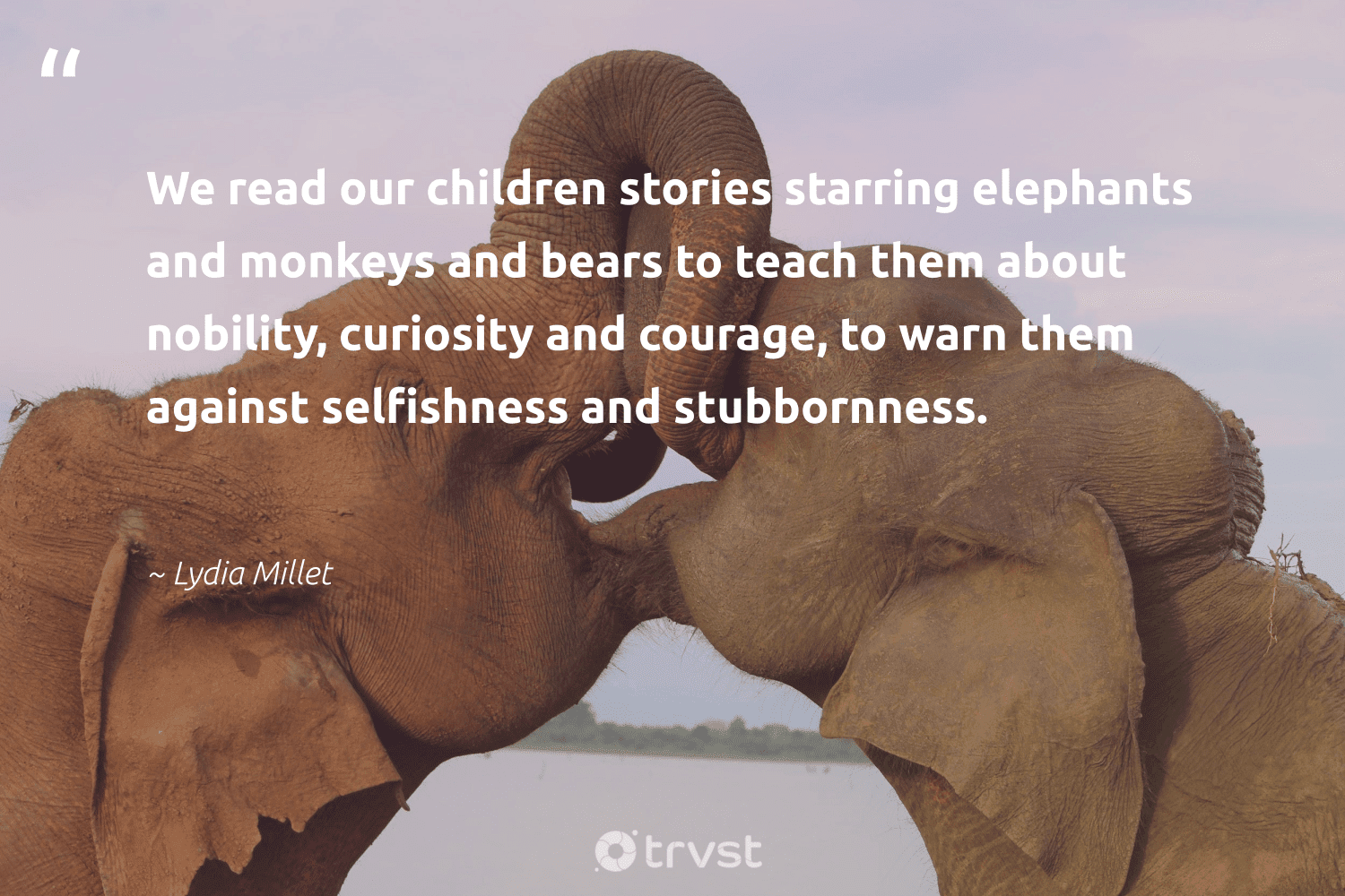 """""""We read our children stories starring elephants and monkeys and bears to teach them about nobility, curiosity and courage, to warn them against selfishness and stubbornness.""""  - Lydia Millet #trvst #quotes #children #elephants #wildlife #beinspired #mammals #socialchange #elephant #dogood #naturelovers #collectiveaction"""