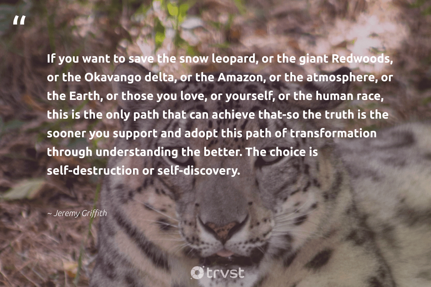 """""""If you want to save the snow leopard, or the giant Redwoods, or the Okavango delta, or the Amazon, or the atmosphere, or the Earth, or those you love, or yourself, or the human race, this is the only path that can achieve that-so the truth is the sooner you support and adopt this path of transformation through understanding the better. The choice is self-destruction or self-discovery.""""  - Jeremy Griffith #trvst #quotes #love #earth #snow #truth #leopard #environment #nature #gogreen #bethechange #conservation"""