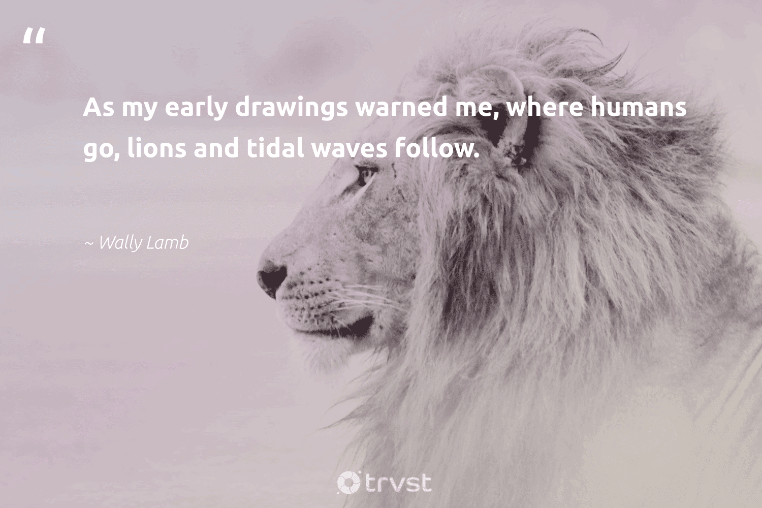 """""""As my early drawings warned me, where humans go, lions and tidal waves follow.""""  - Wally Lamb #trvst #quotes #waves #lions #bigcats #socialchange #protectnature #bethechange #sustainability #collectiveaction #perfectnature #socialimpact"""