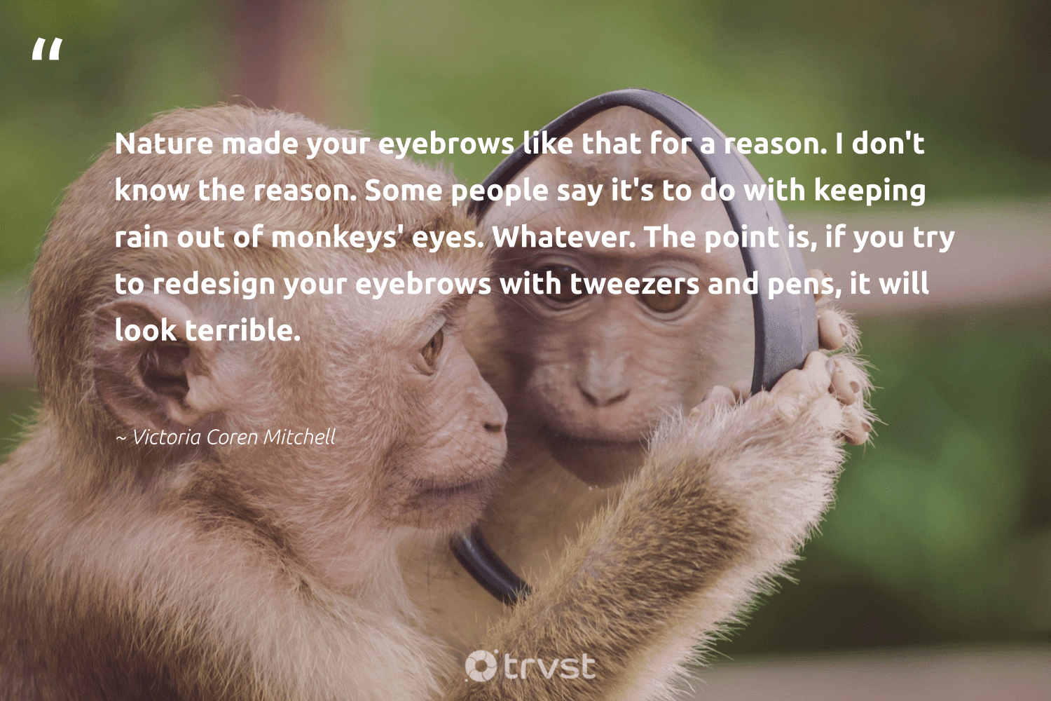 """""""Nature made your eyebrows like that for a reason. I don't know the reason. Some people say it's to do with keeping rain out of monkeys' eyes. Whatever. The point is, if you try to redesign your eyebrows with tweezers and pens, it will look terrible.""""  - Victoria Coren Mitchell #trvst #quotes #nature #monkeys #earth #monkey #wildernessnation #dosomething #conservation #perfectnature #sustainable #changetheworld"""