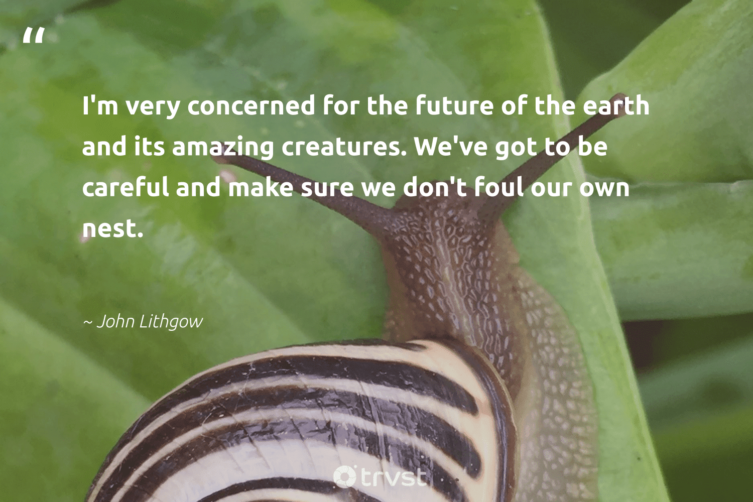 """""""I'm very concerned for the future of the earth and its amazing creatures. We've got to be careful and make sure we don't foul our own nest.""""  - John Lithgow #trvst #quotes #earth #mothernature #science #wildlifeplanet #dosomething #conservation #palaeontology #green #planetearthfirst #planet"""