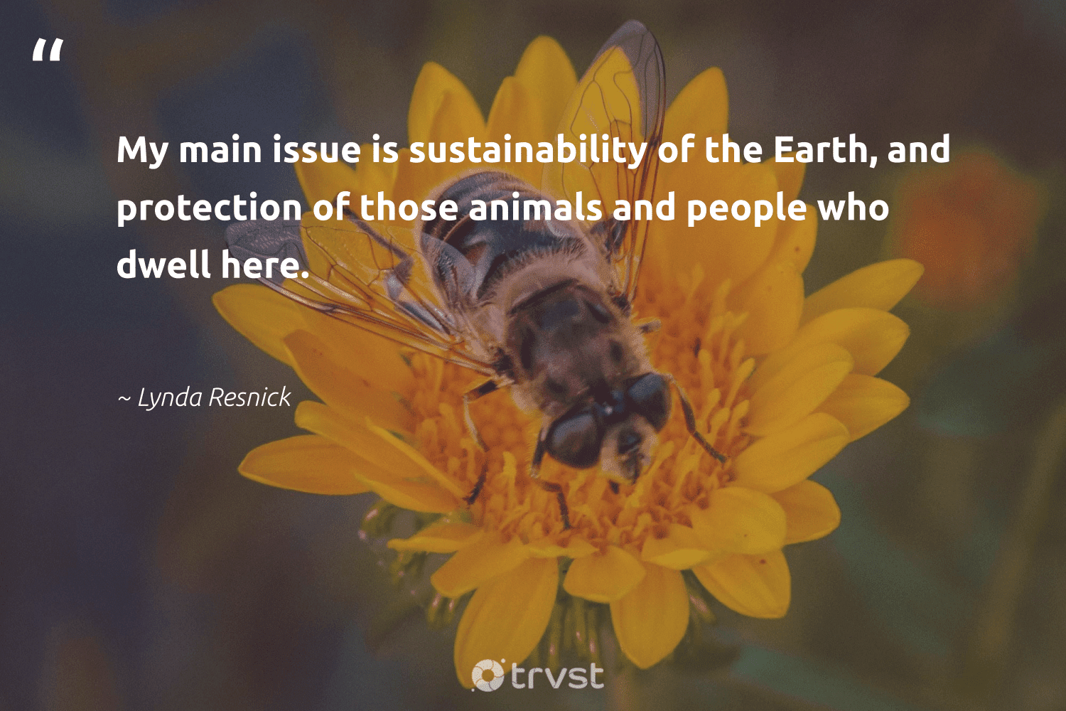 """""""My main issue is sustainability of the Earth, and protection of those animals and people who dwell here.""""  - Lynda Resnick #trvst #quotes #sustainability #earth #animals #planet #parrot #sustainable #dosomething #nature #cheetah #gogreen"""