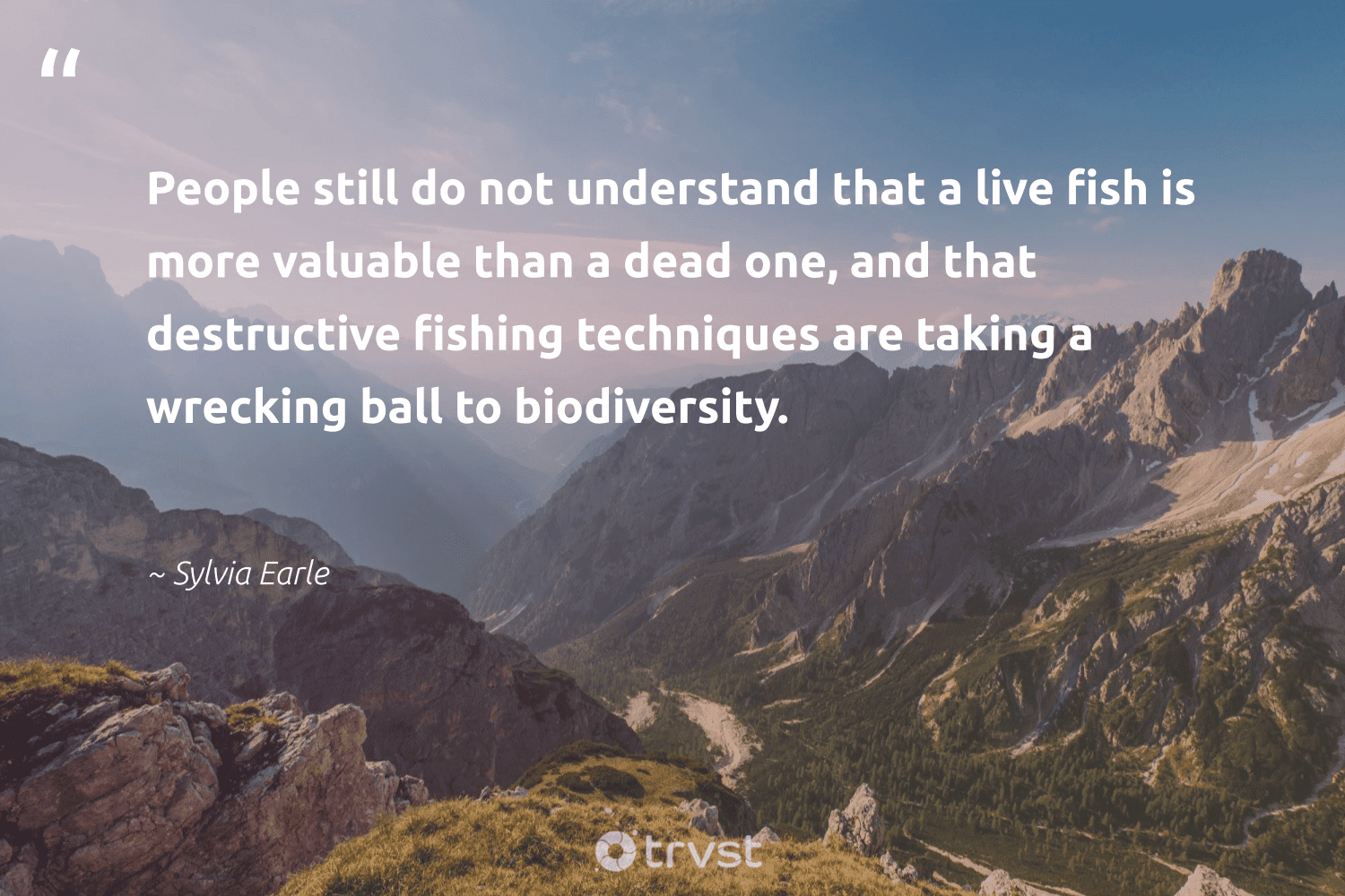 """""""People still do not understand that a live fish is more valuable than a dead one, and that destructive fishing techniques are taking a wrecking ball to biodiversity.""""  - Sylvia Earle #trvst #quotes #biodiversity #fishing #fish #environment #palaeontology #cheetah #ecoconscious #conservation #sanctuary #bird"""