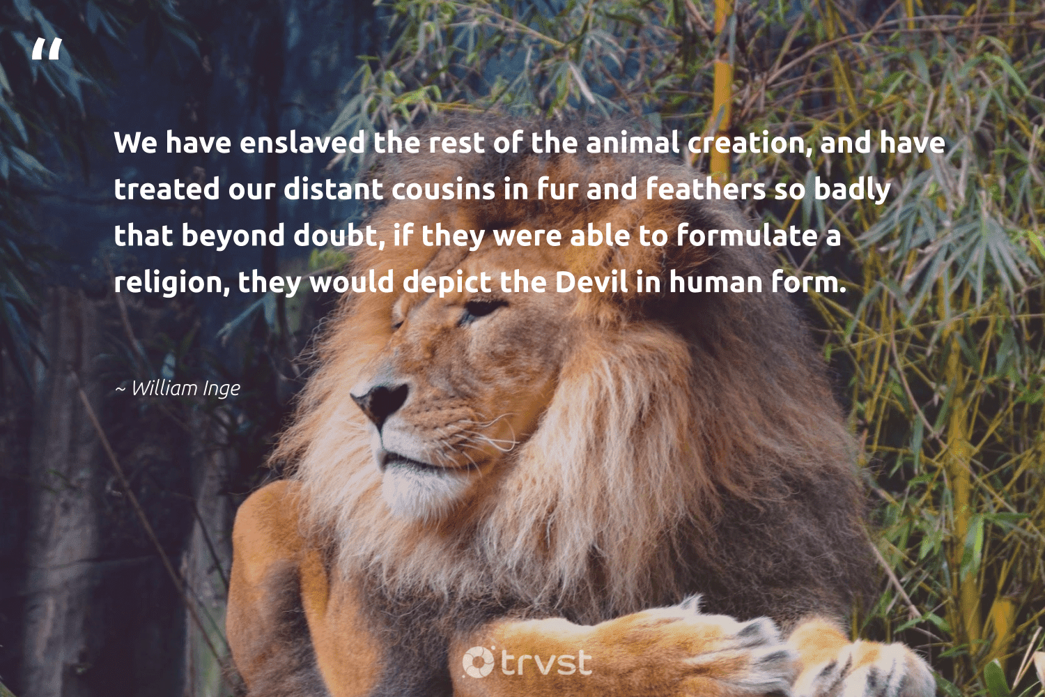 """""""We have enslaved the rest of the animal creation, and have treated our distant cousins in fur and feathers so badly that beyond doubt, if they were able to formulate a religion, they would depict the Devil in human form.""""  - William Inge #trvst #quotes #wildlife #animal #sanctuary #tiger #thinkgreen #animals #invertebrate #natural #collectiveaction #animallovers"""