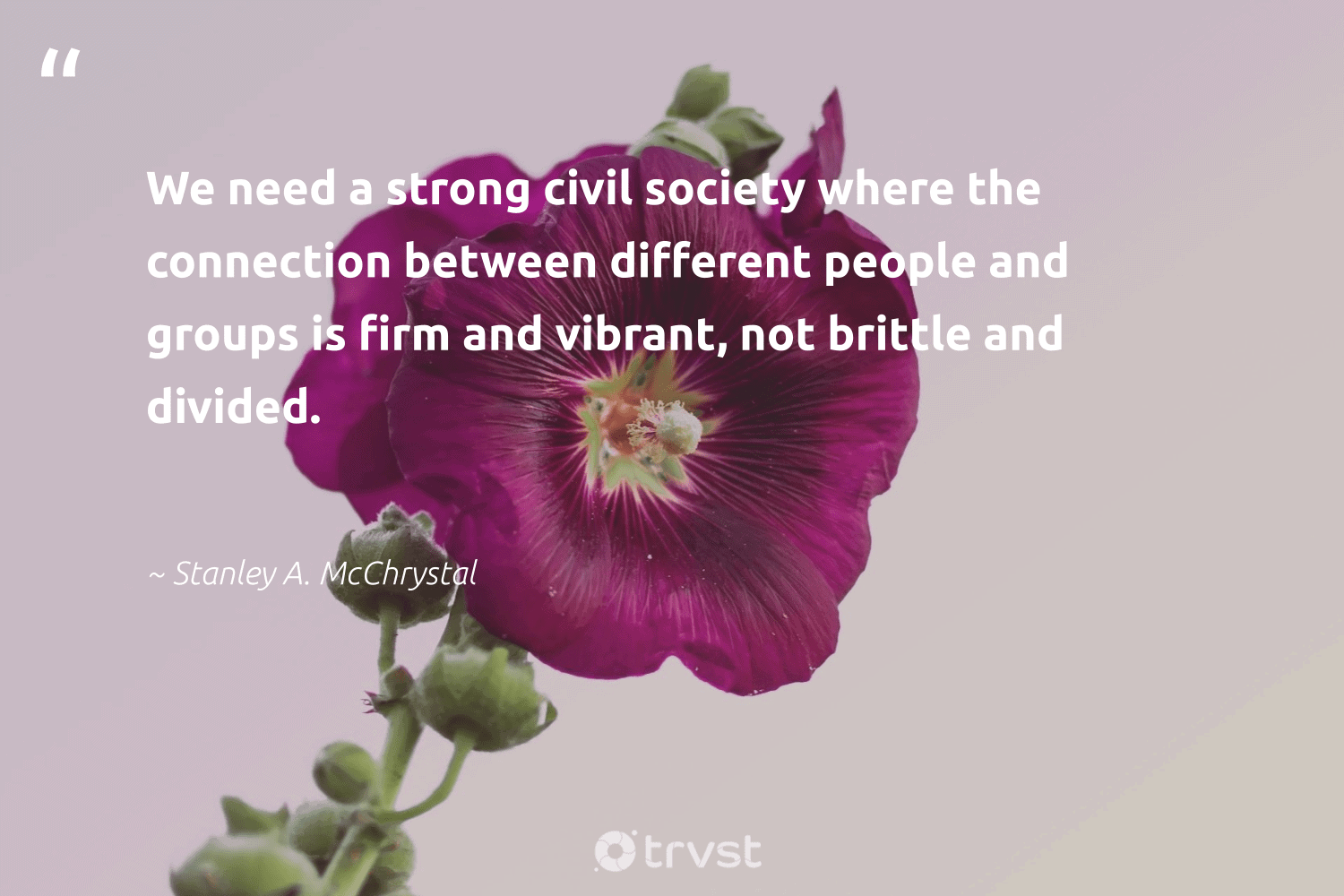 """""""We need a strong civil society where the connection between different people and groups is firm and vibrant, not brittle and divided.""""  - Stanley A. McChrystal #trvst #quotes #society #weareallone #gogreen #equalopportunity #thinkgreen #giveback #dosomething #communities #bethechange #betterplanet"""