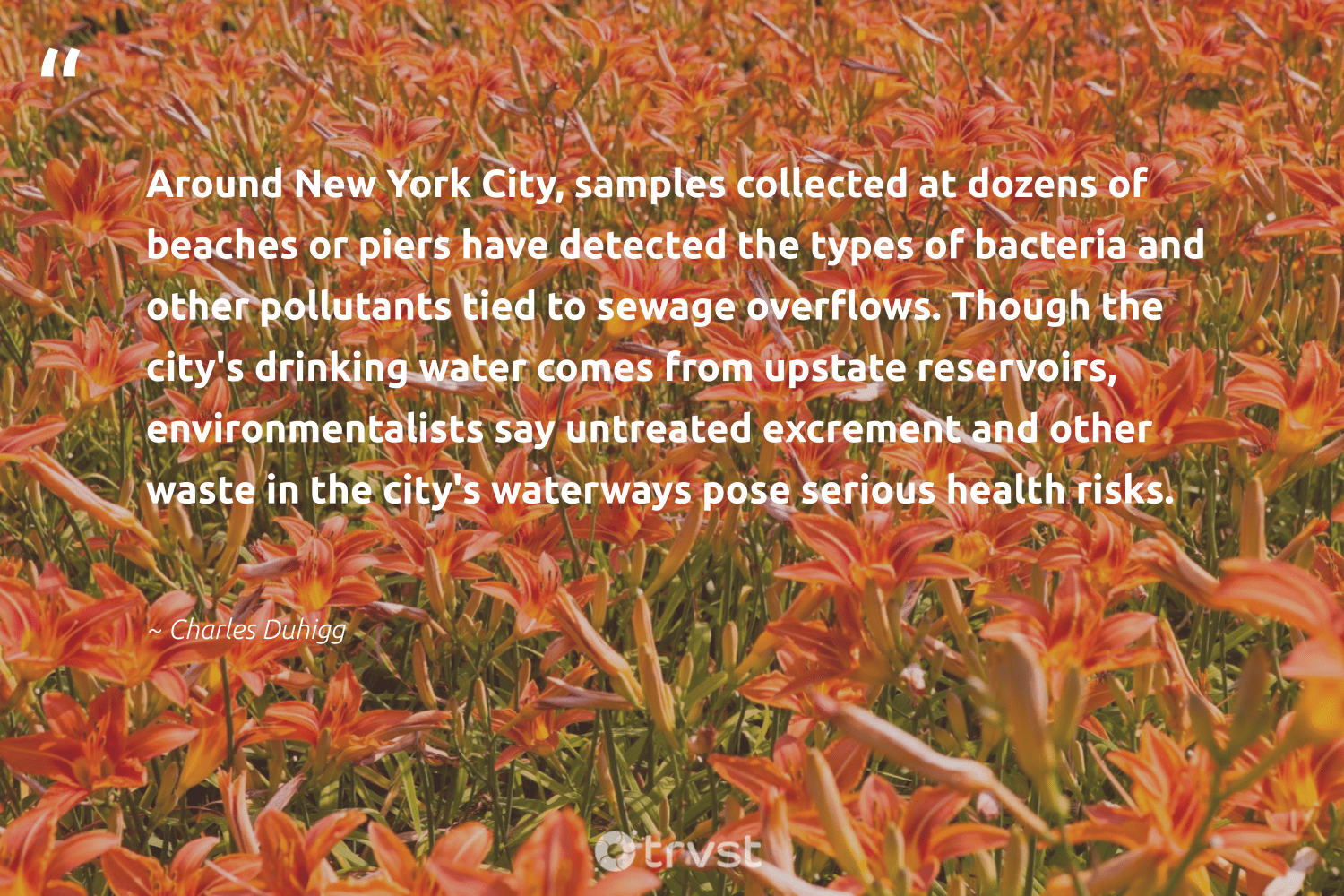 """""""Around New York City, samples collected at dozens of beaches or piers have detected the types of bacteria and other pollutants tied to sewage overflows. Though the city's drinking water comes from upstate reservoirs, environmentalists say untreated excrement and other waste in the city's waterways pose serious health risks.""""  - Charles Duhigg #trvst #quotes #ocean #waste #water #health #river #savetheplanet #giveback #impact #saveourocean #earth"""
