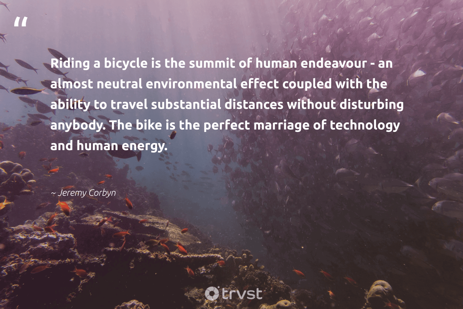 """""""Riding a bicycle is the summit of human endeavour - an almost neutral environmental effect coupled with the ability to travel substantial distances without disturbing anybody. The bike is the perfect marriage of technology and human energy.""""  - Jeremy Corbyn #trvst #quotes #environmental #energy #travel #underwater #sustainability #tiger #beinspired #marinelife #ecofriendly #flowers"""