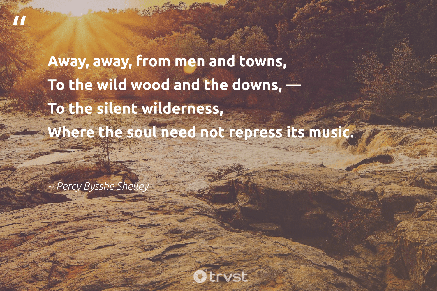 """""""Away, away, from men and towns, To the wild wood and the downs, — To the silent wilderness, Where the soul need not repress its music.""""  - Percy Bysshe Shelley #trvst #quotes #deforestation #wood #trees #gogreen #naturelovers #planetearthfirst #treeplanting #eco #sustainability #bethechange"""