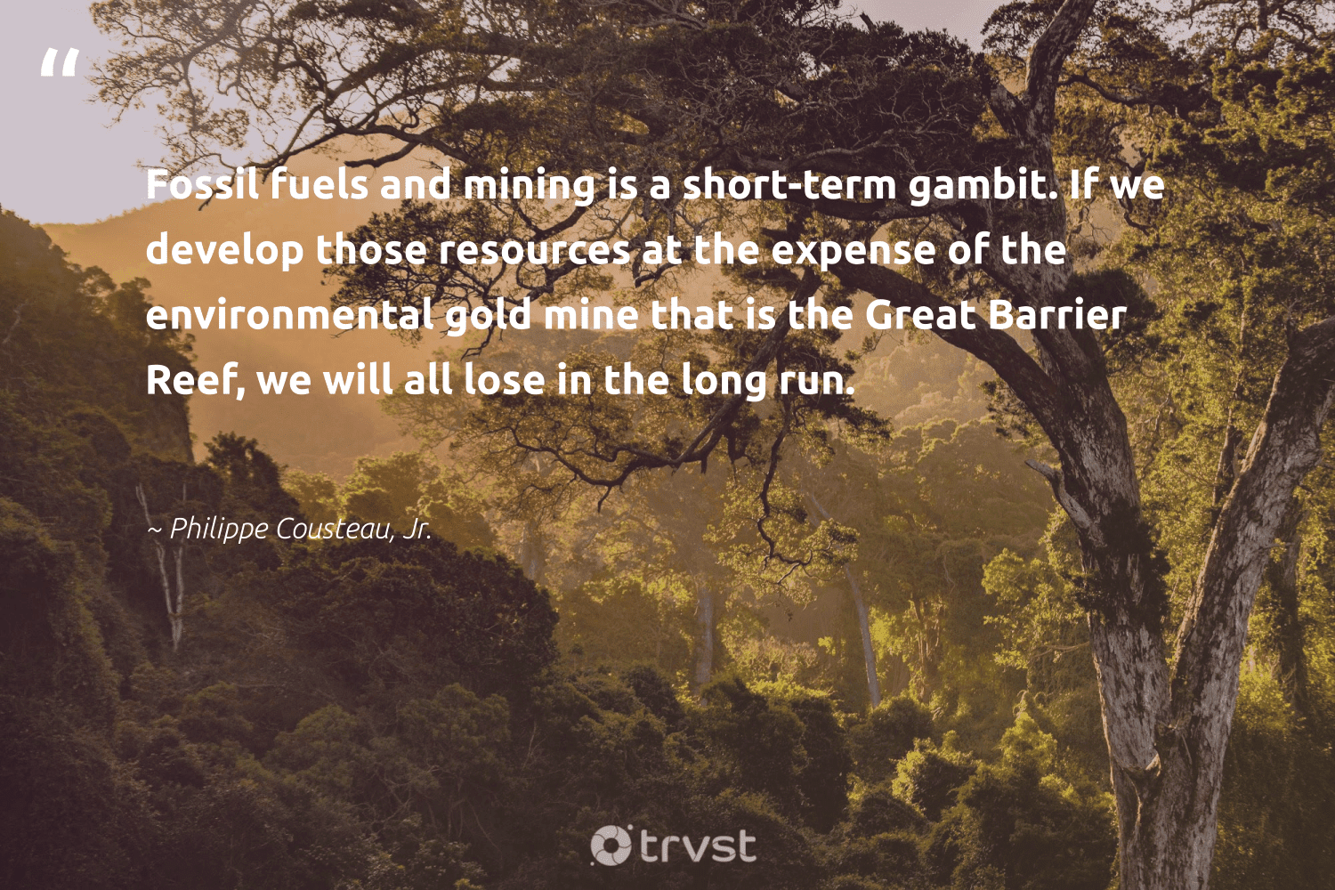 """""""Fossil fuels and mining is a short-term gambit. If we develop those resources at the expense of the environmental gold mine that is the Great Barrier Reef, we will all lose in the long run.""""  - Philippe Cousteau, Jr. #trvst #quotes #environmental #fossilfuels #fossil #oilslick #naturelovers #sustainable #gogreen #coal #wildlifeplanet #carbonfree"""