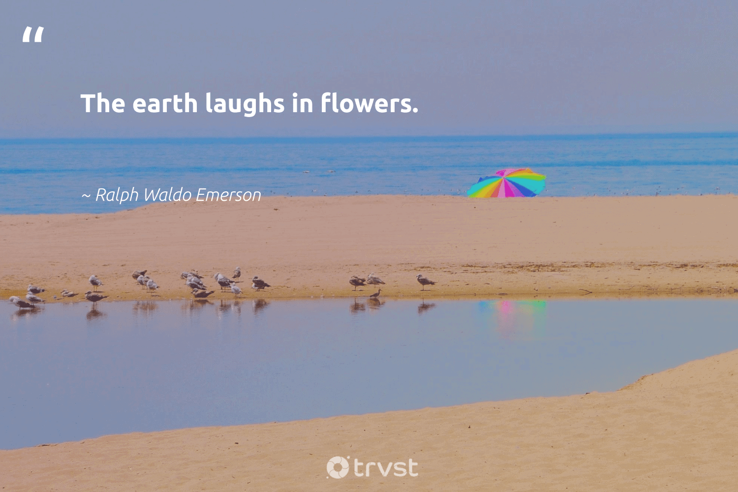 """""""The earth laughs in flowers.""""  - Ralph Waldo Emerson #trvst #quotes #environment #earth #flowers #mothernature #giveback #savetheplanet #thinkgreen #conservation #gogreen #volunteer"""