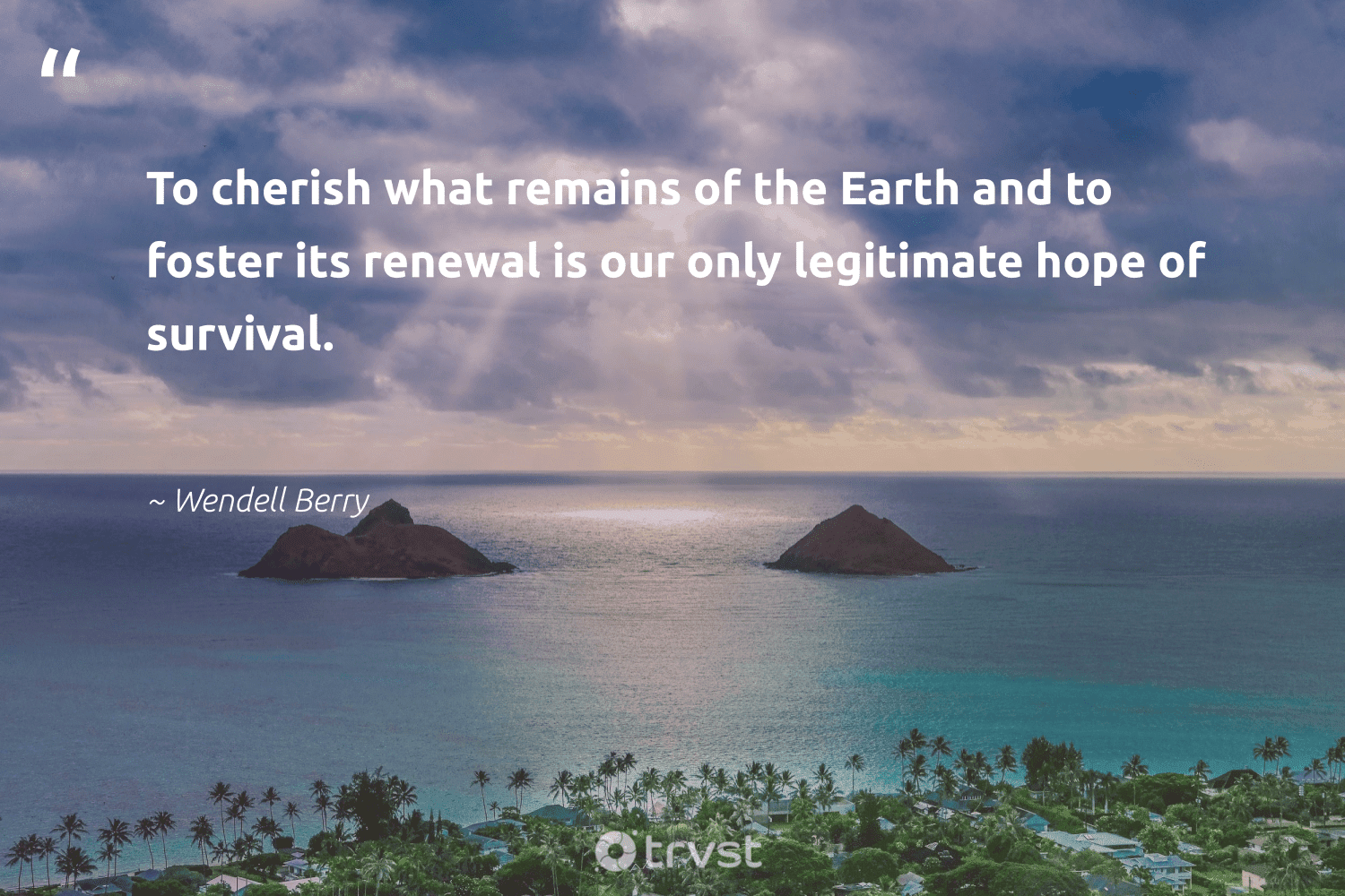 """""""To cherish what remains of the Earth and to foster its renewal is our only legitimate hope of survival.""""  - Wendell Berry #trvst #quotes #environment #earth #hope #nature #getoutside #naturelovers #collectiveaction #mothernature #noplanetb #sustainability"""