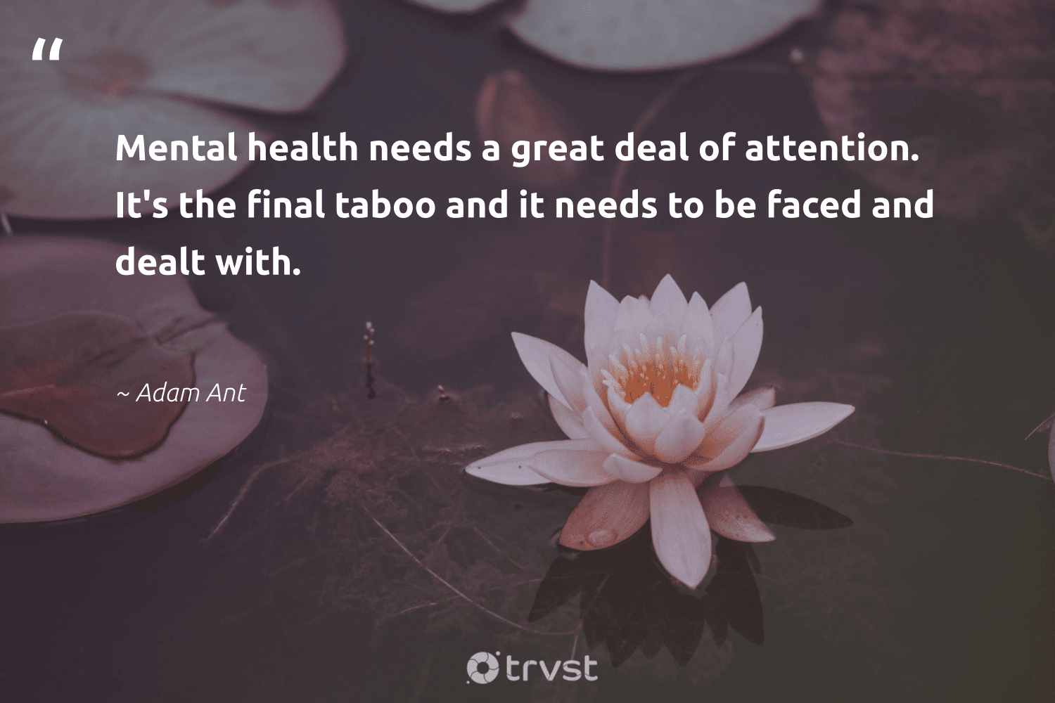 """""""Mental health needs a great deal of attention. It's the final taboo and it needs to be faced and dealt with.""""  - Adam Ant #trvst #quotes #mentalhealth #health #depression #changemakers #nevergiveup #beinspired #stampoutthestigma #togetherwecan #mindset #bethechange"""