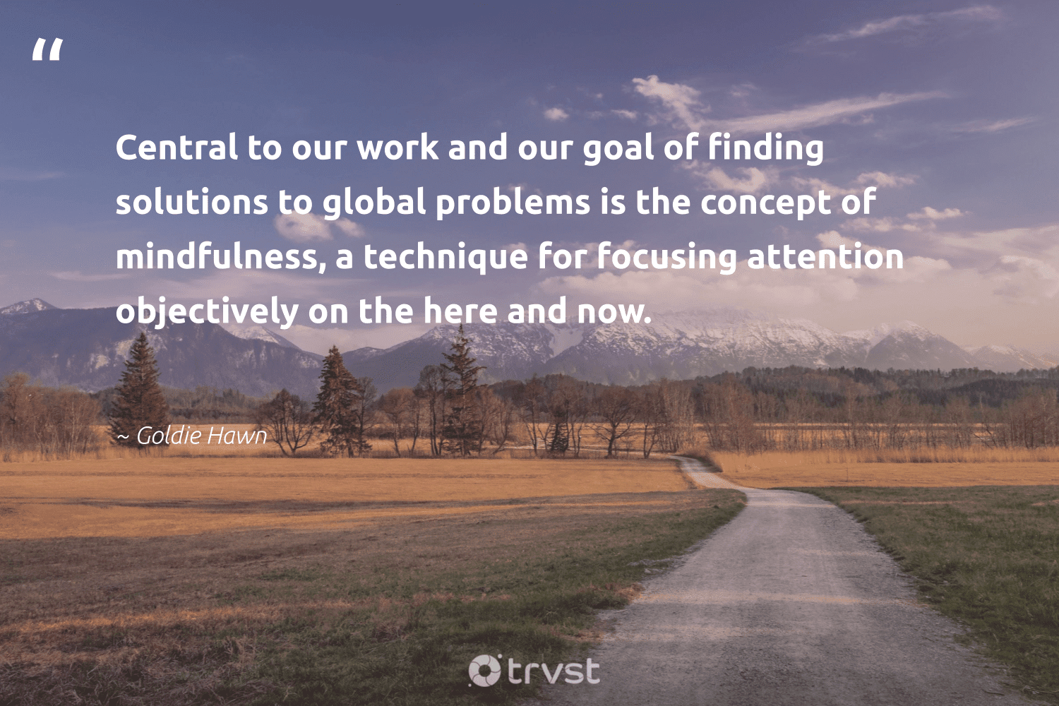 """""""Central to our work and our goal of finding solutions to global problems is the concept of mindfulness, a technique for focusing attention objectively on the here and now.""""  - Goldie Hawn #trvst #quotes #mindfulness #mindful #mindset #begreat #ecoconscious #goals #meditation #health #dosomething #positivity"""