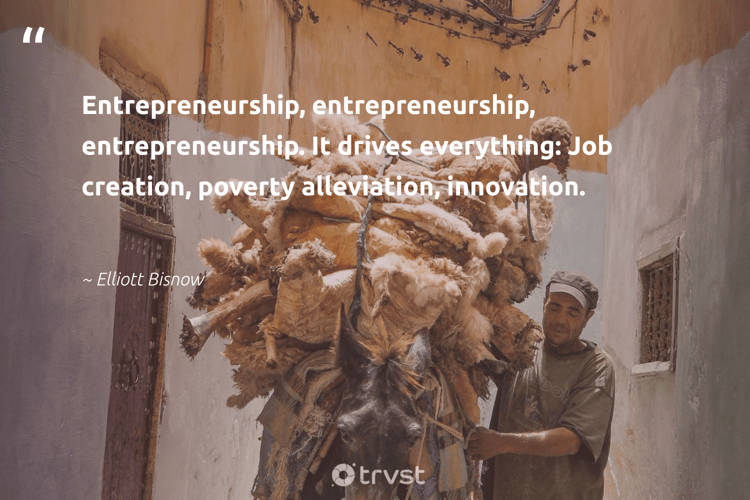 """""""Entrepreneurship, entrepreneurship, entrepreneurship. It drives everything: Job creation, poverty alleviation, innovation.""""  - Elliott Bisnow #trvst #quotes #poverty #entrepreneurship #endpoverty #equalopportunity #inclusion #dotherightthing #makeadifference #equalrights #bethechange #weareallone"""
