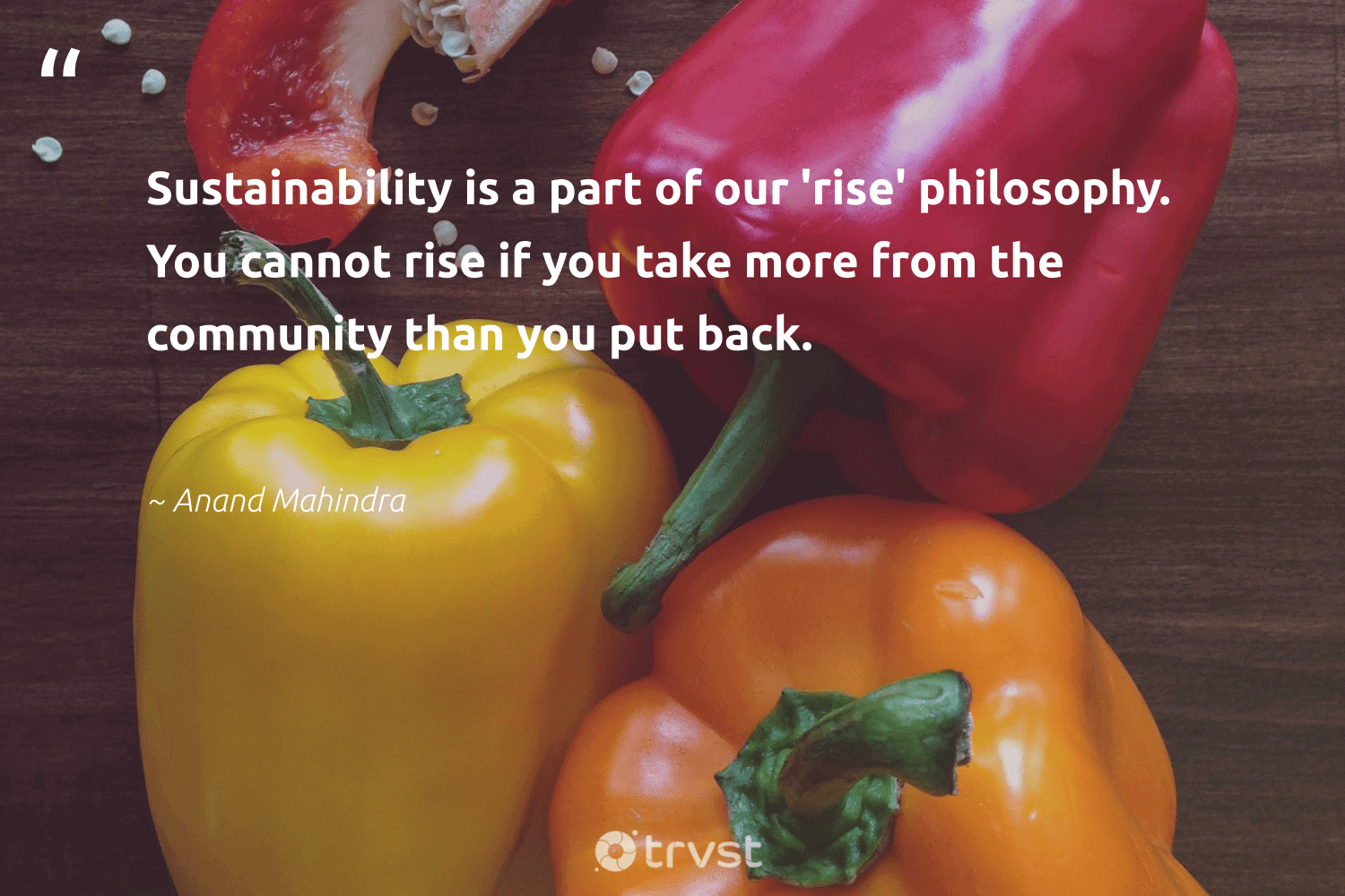 """""""Sustainability is a part of our 'rise' philosophy. You cannot rise if you take more from the community than you put back.""""  - Anand Mahindra #trvst #quotes #sustainability #ecofriendly #bethechange #green #dotherightthing #sustainable #greenliving #gogreen #dosomething #sustainableliving"""
