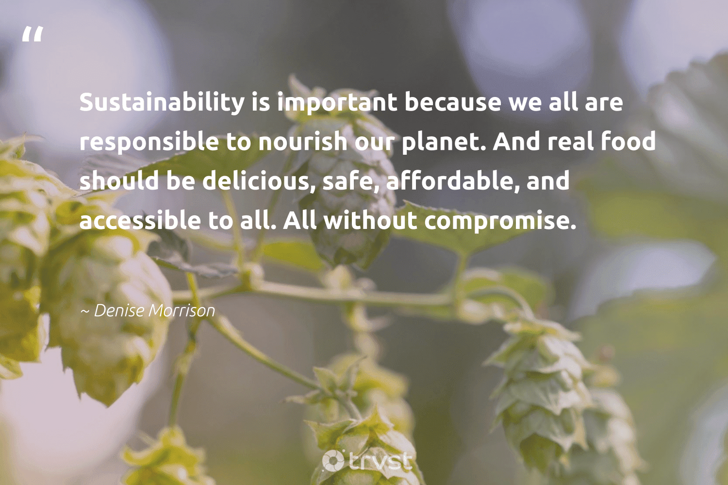 """""""Sustainability is important because we all are responsible to nourish our planet. And real food should be delicious, safe, affordable, and accessible to all. All without compromise.""""  - Denise Morrison #trvst #quotes #sustainability #affordable #planet #food #nourish #100percentrenewable #fashion #parisagreement #bethechange #renewable"""