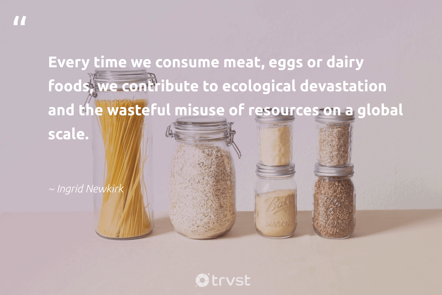 """""""Every time we consume meat, eggs or dairy foods, we contribute to ecological devastation and the wasteful misuse of resources on a global scale.""""  - Ingrid Newkirk #trvst #quotes #greenliving #impact #bethechange #thinkgreen #gogreen #changetheworld #fashion #planetearthfirst #sustainability #dotherightthing"""