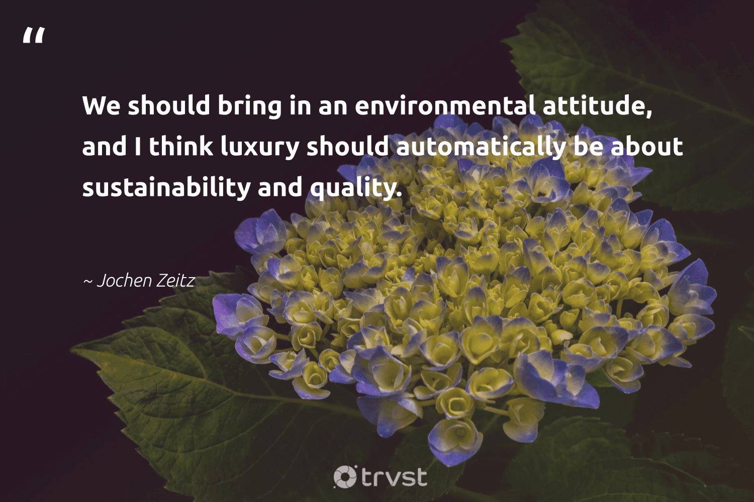 """""""We should bring in an environmental attitude, and I think luxury should automatically be about sustainability and quality.""""  - Jochen Zeitz #trvst #quotes #sustainability #environmental #sustainable #fashion #bethechange #ecoconscious #sustainableliving #greenliving #green #dogood"""