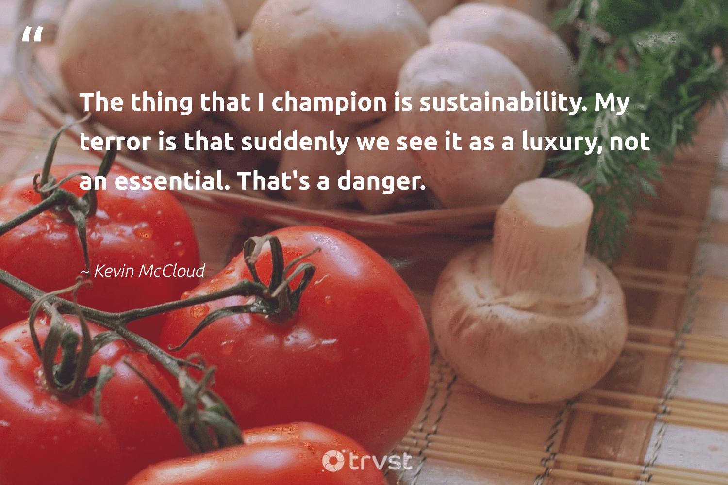 """""""The thing that I champion is sustainability. My terror is that suddenly we see it as a luxury, not an essential. That's a danger.""""  - Kevin McCloud #trvst #quotes #sustainability #sustainableliving #green #fashion #bethechange #sustainable #greenliving #gogreen #beinspired #ecofriendly"""