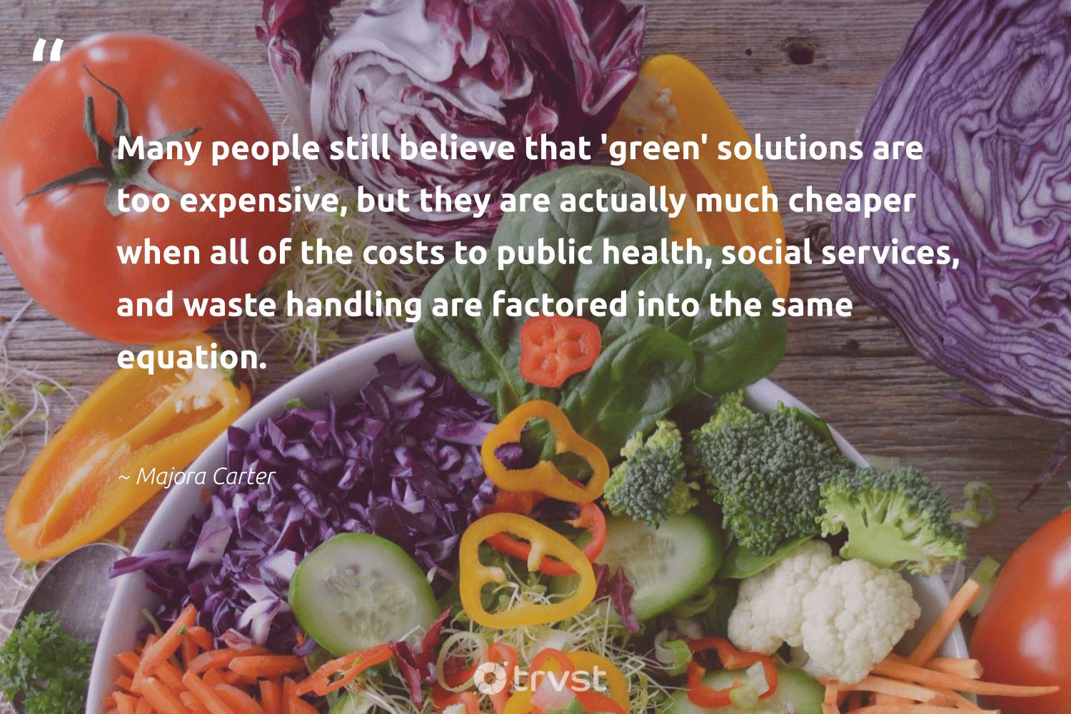 """""""Many people still believe that 'green' solutions are too expensive, but they are actually much cheaper when all of the costs to public health, social services, and waste handling are factored into the same equation.""""  - Majora Carter #trvst #quotes #waste #green #health #gogreen #bethechange #sustainability #ecoconscious #fashion #beinspired #sustainable"""