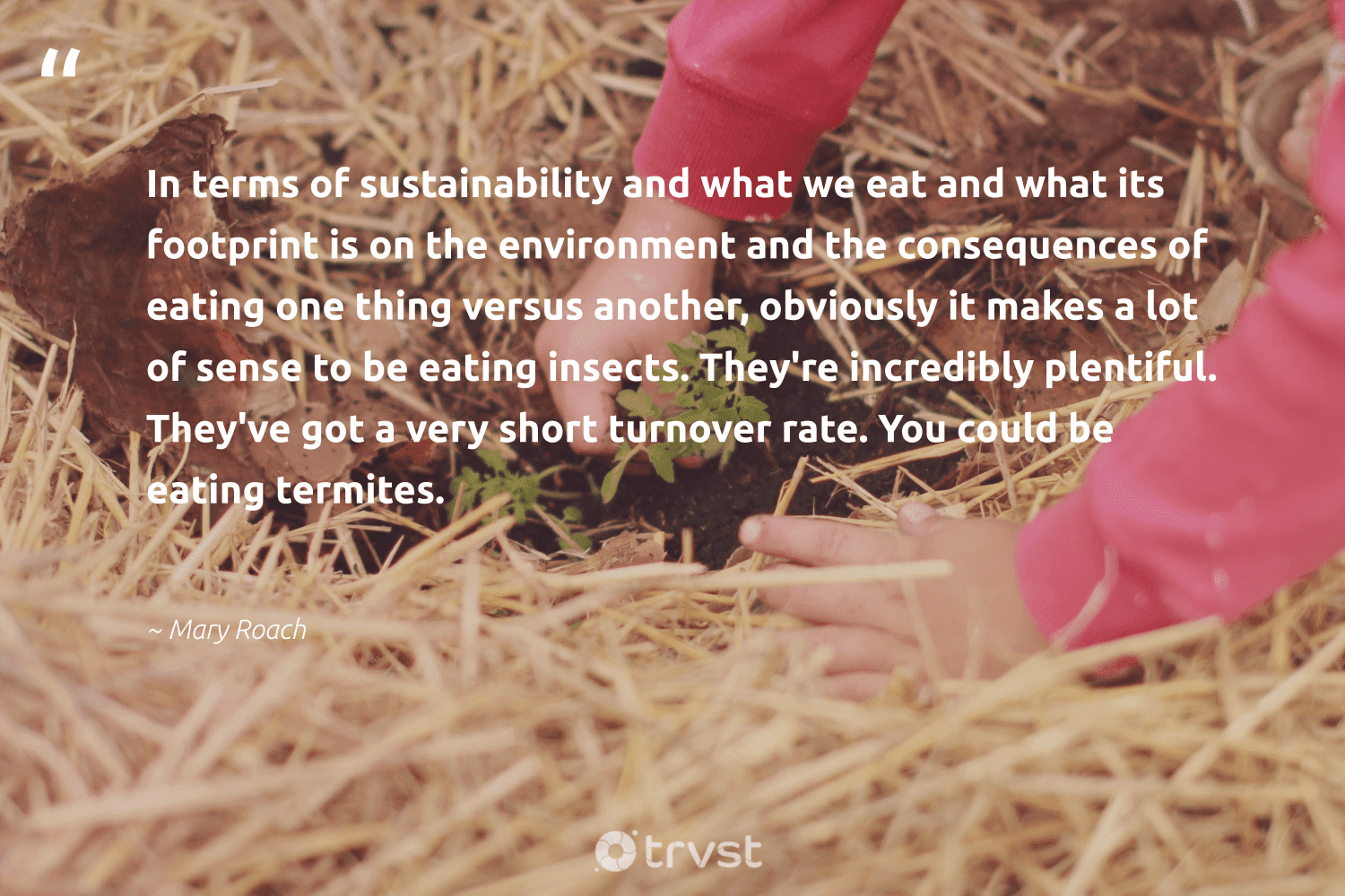 """""""In terms of sustainability and what we eat and what its footprint is on the environment and the consequences of eating one thing versus another, obviously it makes a lot of sense to be eating insects. They're incredibly plentiful. They've got a very short turnover rate. You could be eating termites.""""  - Mary Roach #trvst #quotes #sustainability #environment #insects #planet #green #gogreen #socialimpact #mothernature #fashion #climatechange"""