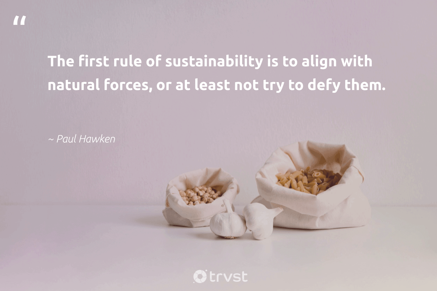 """""""The first rule of sustainability is to align with natural forces, or at least not try to defy them.""""  - Paul Hawken #trvst #quotes #sustainability #natural #sustainableliving #greenliving #gogreen #impact #sustainable #green #bethechange #takeaction"""