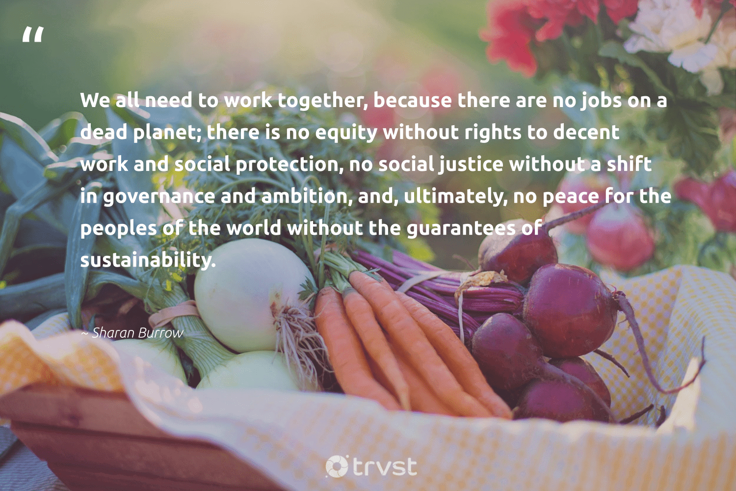 """""""We all need to work together, because there are no jobs on a dead planet; there is no equity without rights to decent work and social protection, no social justice without a shift in governance and ambition, and, ultimately, no peace for the peoples of the world without the guarantees of sustainability.""""  - Sharan Burrow #trvst #quotes #sustainability #peace #justice #socialjustice #sustainable #green #gogreen #collectiveaction #ecofriendly #fashion"""