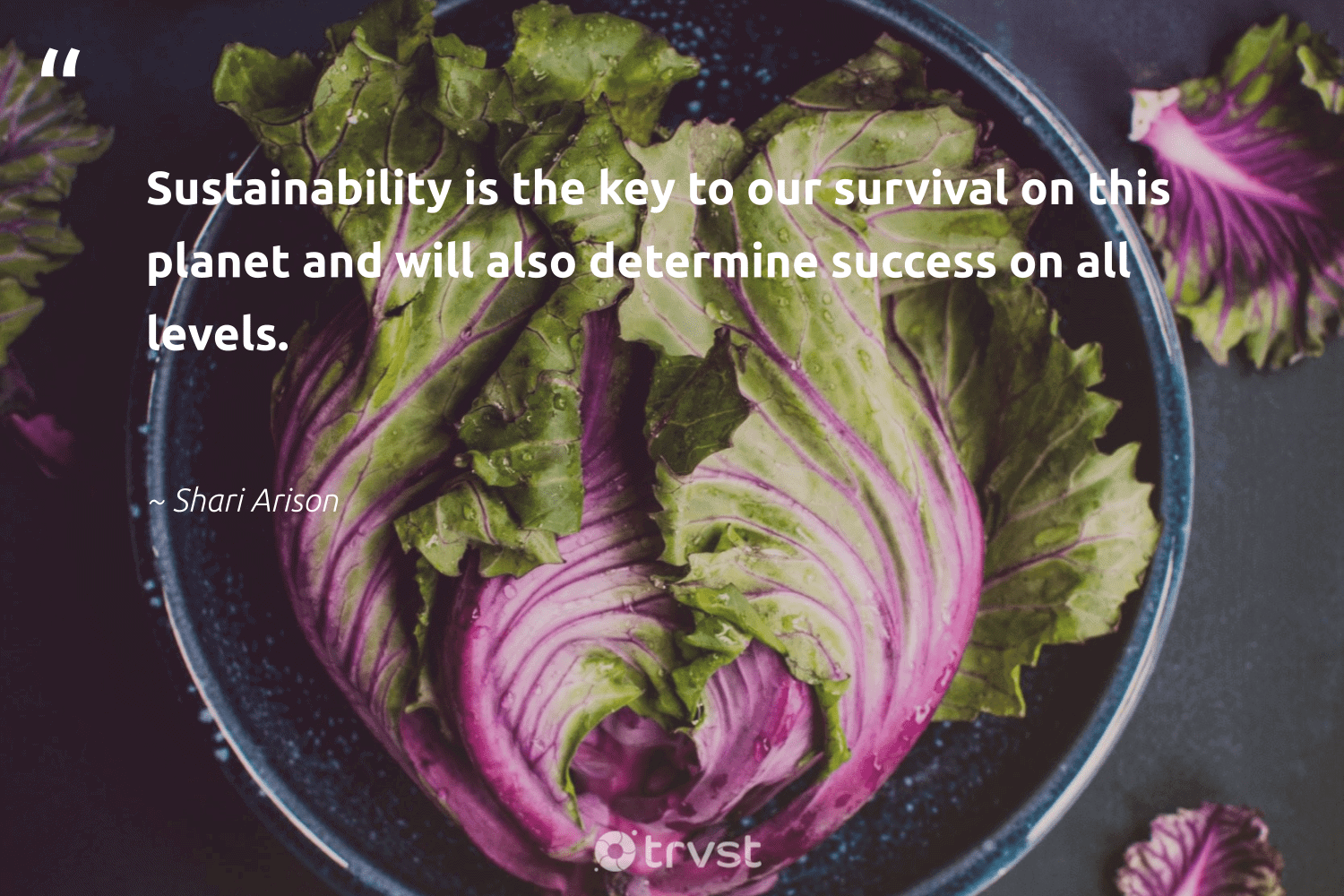 """""""Sustainability is the key to our survival on this planet and will also determine success on all levels.""""  - Shari Arison #trvst #quotes #sustainability #planet #success #nature #fashion #sustainableliving #dosomething #conservation #green #eco"""