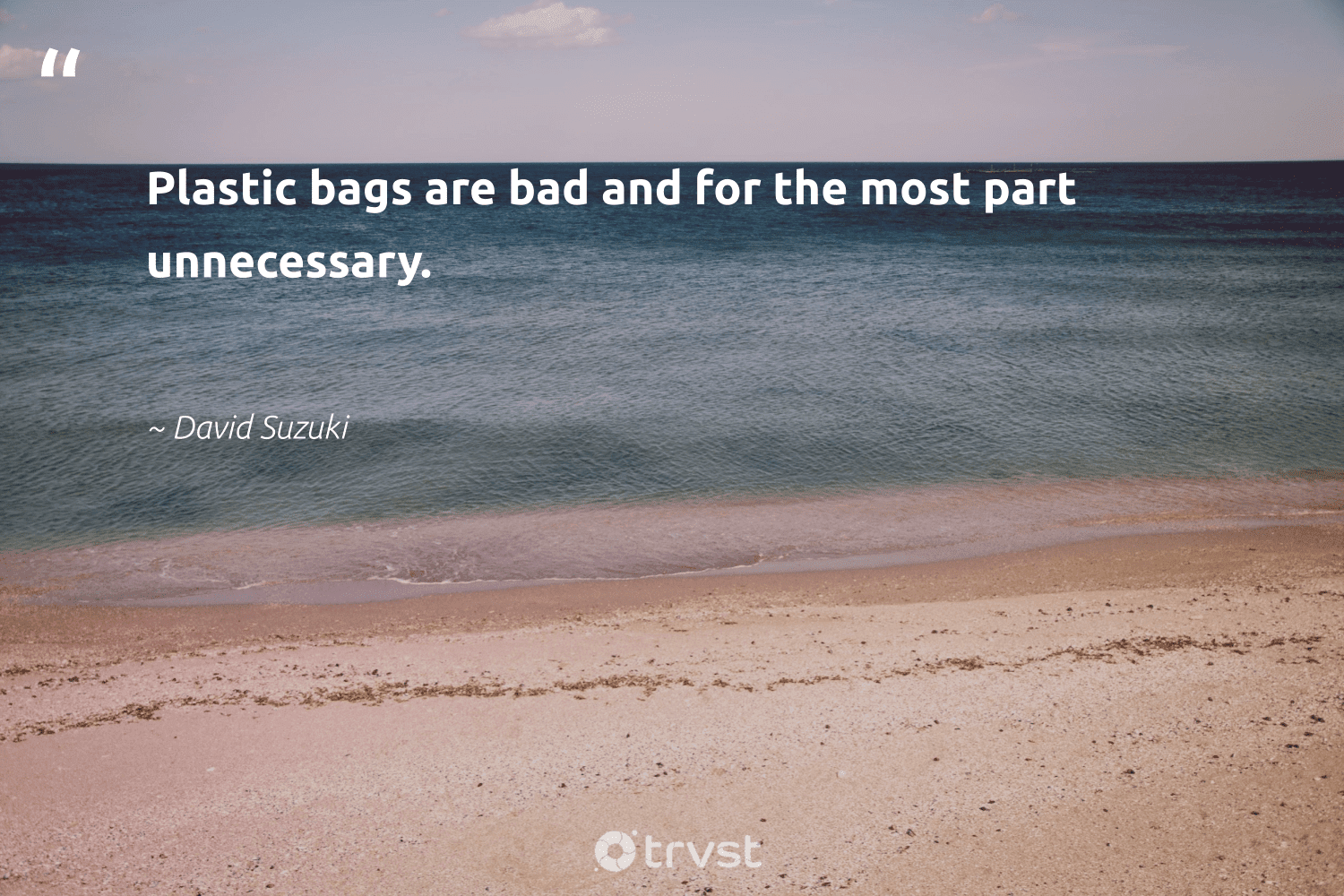 """""""Plastic bags are bad and for the most part unnecessary.""""  - David Suzuki #trvst #quotes #plasticwaste #plastic #plastics #biodegradable #saveourplanet #thinkgreen #plasticfreesolutions #savetheplanet #waronwaste #dotherightthing"""
