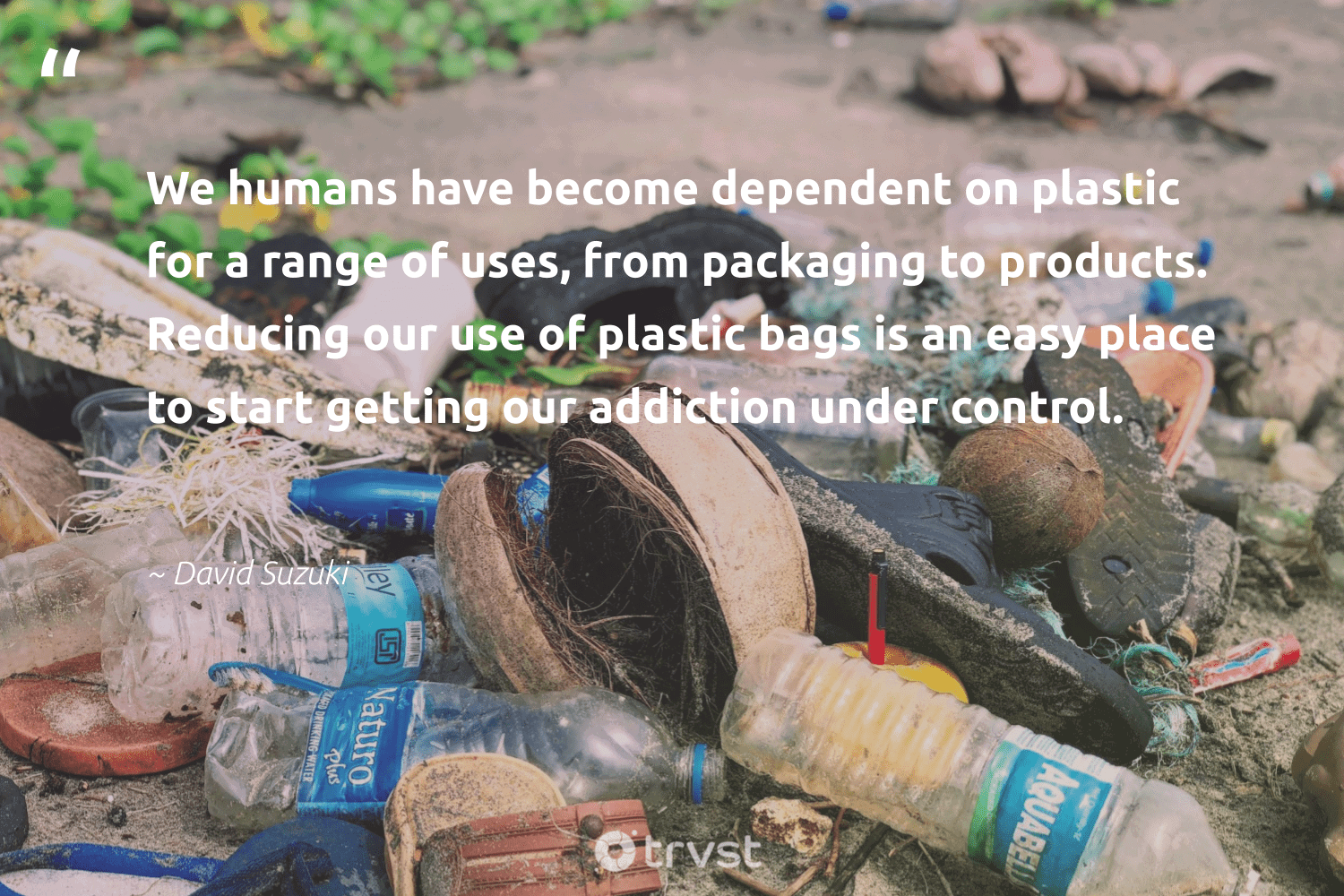 """""""We humans have become dependent on plastic for a range of uses, from packaging to products. Reducing our use of plastic bags is an easy place to start getting our addiction under control.""""  - David Suzuki #trvst #quotes #plasticwaste #plastic #bringyourownbag #saveourplanet #biodegradable #ecoconscious #ourplasticproblem #savetheplanet #changeahabit #collectiveaction"""