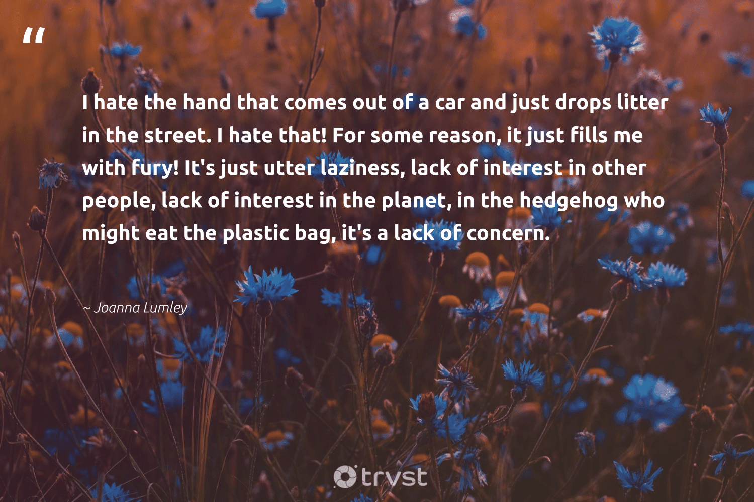 """""""I hate the hand that comes out of a car and just drops litter in the street. I hate that! For some reason, it just fills me with fury! It's just utter laziness, lack of interest in other people, lack of interest in the planet, in the hedgehog who might eat the plastic bag, it's a lack of concern.""""  - Joanna Lumley #trvst #quotes #plasticwaste #plastic #planet #plasticfree #betterfortheplanet #environmentallyfriendly #dotherightthing #microplastics #waste #saveourplanet"""